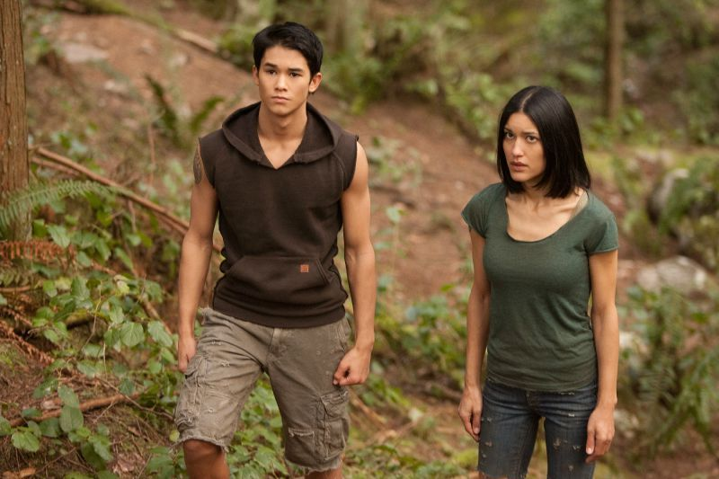 The quileute wolf pack the twilight saga breaking dawn part 1