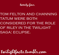Twilight Facts - critical-analysis-of-twilight fan art