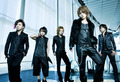 ViViD (New Look Fake)
