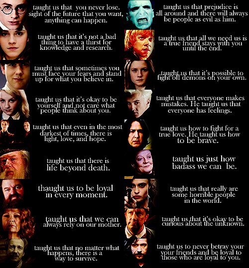 What They've Taught Us - harry-potter photo