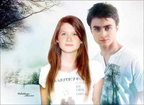 h/g love - harry-and-ginny Photo