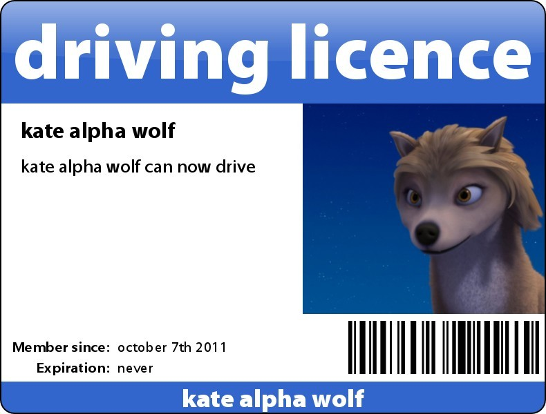 kates driving licence