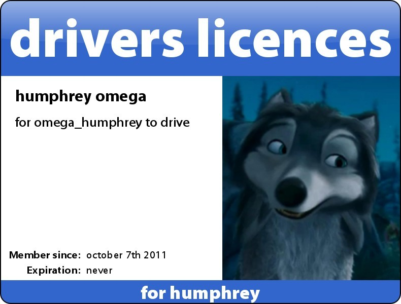 my driving licence