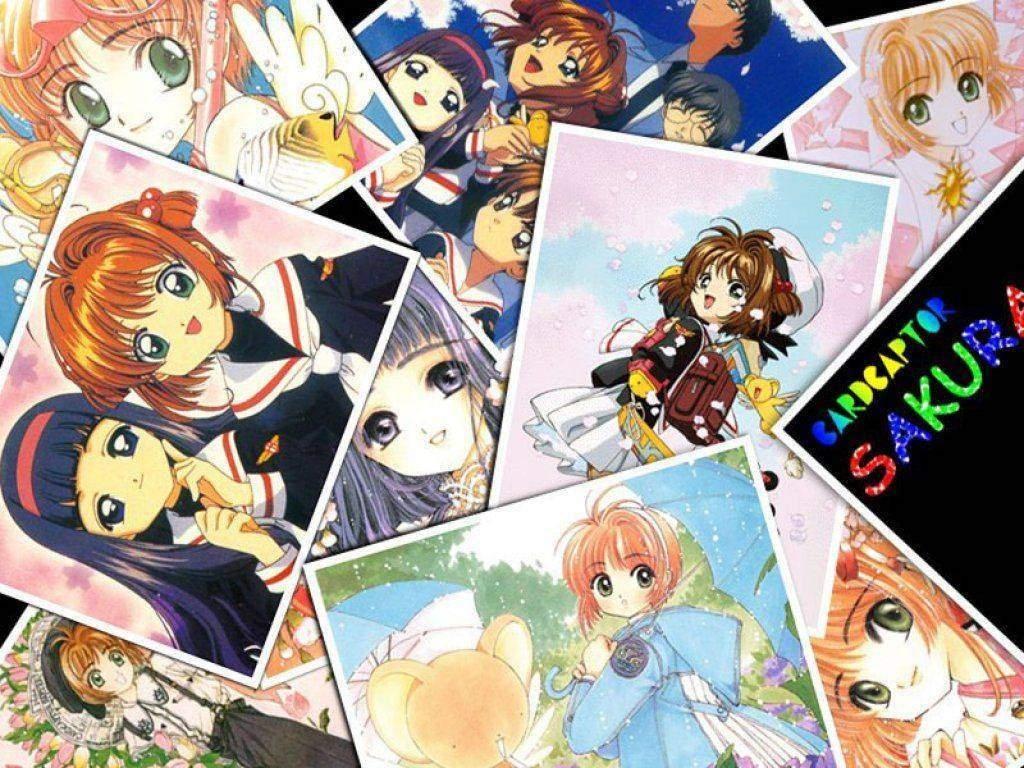 Desenho, anime, mangá,infantil, criança, cartas clow, kero
