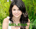 selly - selena-gomez-and-demi-lovato wallpaper