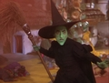 The Wicked Witch - the-wizard-of-oz photo