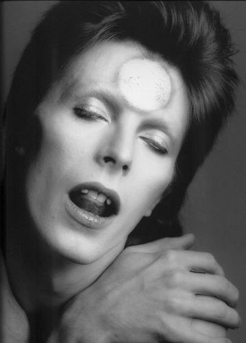 Ziggy Stardust wallpaper with a portrait entitled ziggy stardust