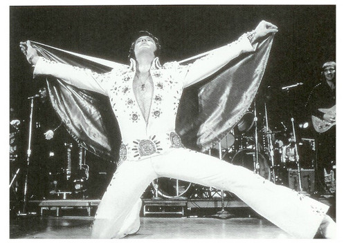☆ Elvis ~ The King ☆