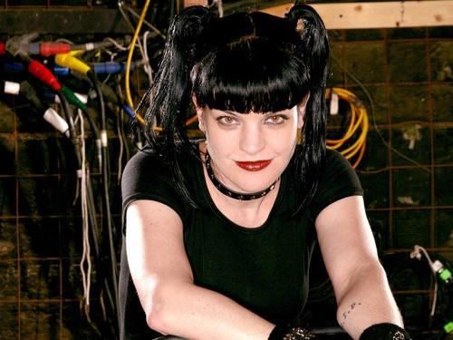 Abby Sciuto wallpaper called Abby Sciuto Wallpaper
