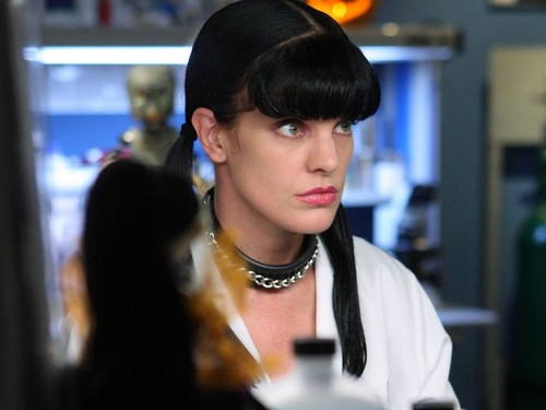 Abby Sciuto wallpaper entitled Abby Sciuto Wallpaper