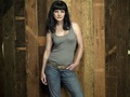 Abby Sciuto Wallpaper - abby-sciuto wallpaper