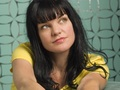 Abby Sciuto wallpaper
