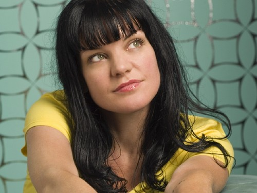 Abby Sciuto wallpaper with a portrait called Abby Sciuto Wallpaper