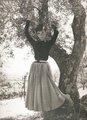 Audrey K. Hepburn - audrey-hepburn photo