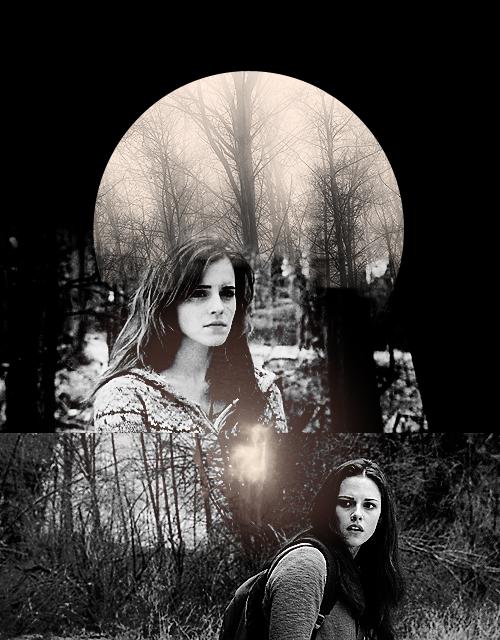 Bella Swan And Hermione Granger Harry Potter Vs