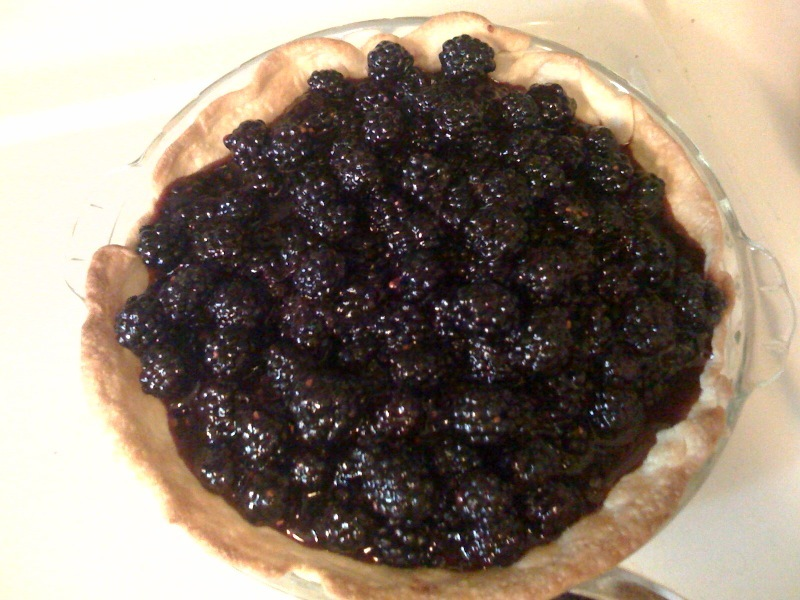 Pie images Blackberry Pie HD wallpaper and background photos (25904666 ...