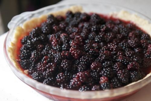 braambes, blackberry Pie