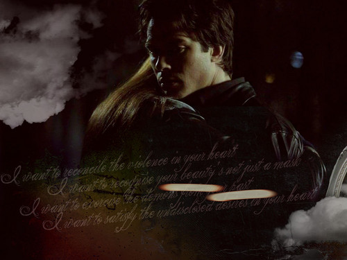 Damon Salvatore wallpaper called Damon Salvatore
