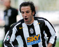 Del Piero wallpapers - alessandro-del-piero photo