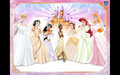 disney Princess Wedding vestido Not All
