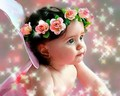 Little angel - sweety-babies photo