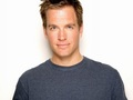 Michael Weatherly 壁纸