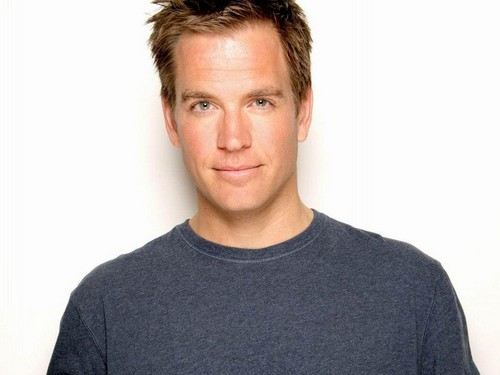 Michael Weatherly wallpaper probably containing a jersey, a sweatshirt, and a long sleeve called Michael Weatherly Wallpaper