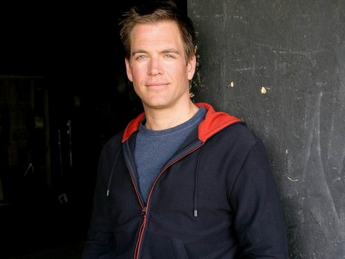 Michael Weatherly kertas dinding