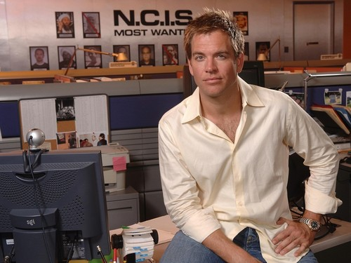Michael Weatherly wallpaper entitled Michael Weatherly Wallpaper