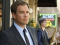 Michael Weatherly Обои