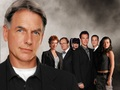 NCIS Wallpaper - ncis wallpaper