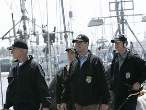 Navy CIS Hintergrund