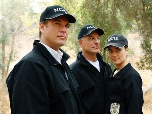 NCIS wolpeyper