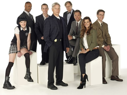 NCIS wallpaper containing a business suit entitled NCIS Wallpaper