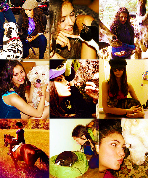 Nina & animals♥