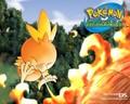 Pokemon WPs