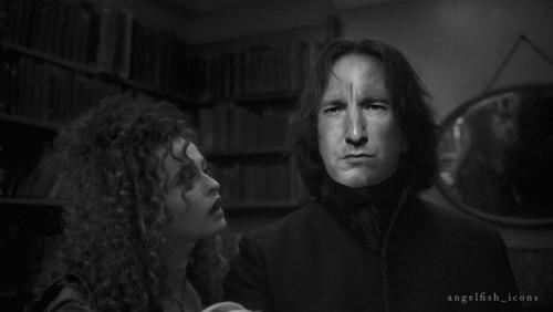 Severus Snape manip