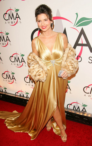 Shania Twain wallpaper possibly with a cena dress entitled Shania Twain