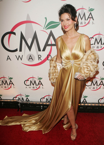 Shania Twain fond d'écran with a dîner dress entitled Shania Twain