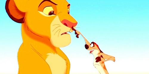 Simba & Timon