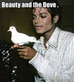So Gentle. - michael-jackson photo