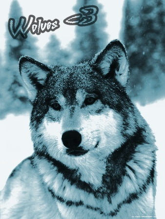 Wolves<3