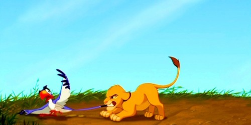 Zazu & Simba