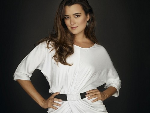 Ziva David wallpaper