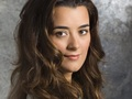 Ziva David Wallpaper - ziva-david wallpaper