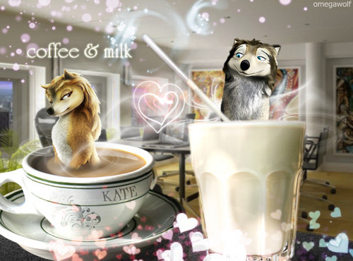 coffee & milch