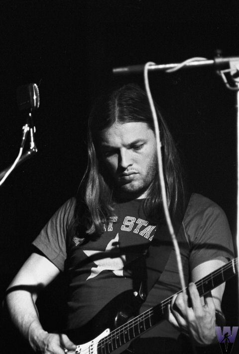 Dave David Gilmour Foto 25948667 Fanpop