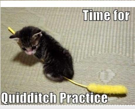 quidditch XD