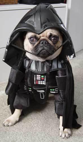 ☆ Lord Vader