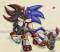 ~Sonadow~ - sonadow photo